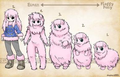 Types- Fluffy Pony by shepherd0821