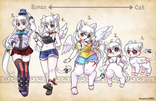 OC Types - Angel Cat