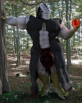 Veroc in the Woods