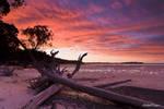 Deadwood sunset