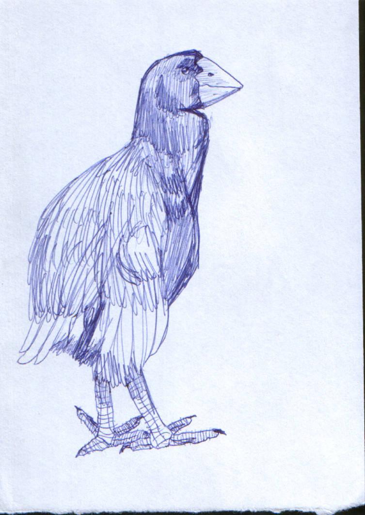 Just Some Random Blue Bird Pen By Ivanprime93 On Deviantart