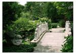 bridge of serenity