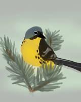 Kirtland's Warbler by Vestasam568