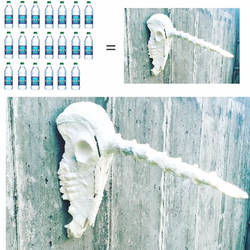 Unicorn Skulls Made from Water Bottles