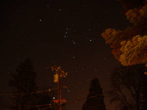 Clear Orion Sky