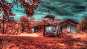 Lost House