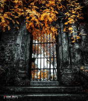 Behind The Gate by bamboomix