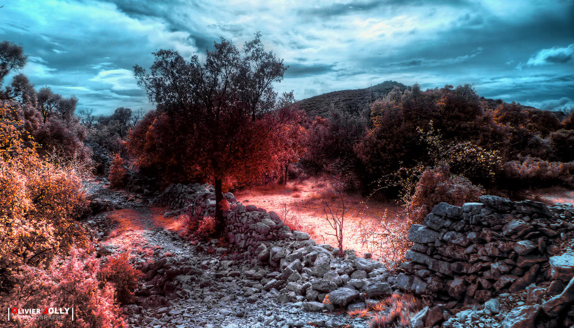Le sentier des Drailles by bamboomix
