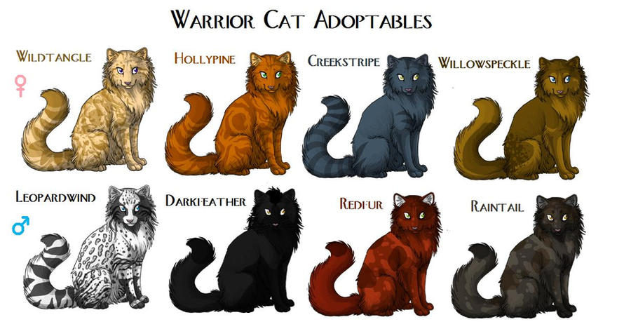 Warrior cats kitten maker warrior cat adoptables closed