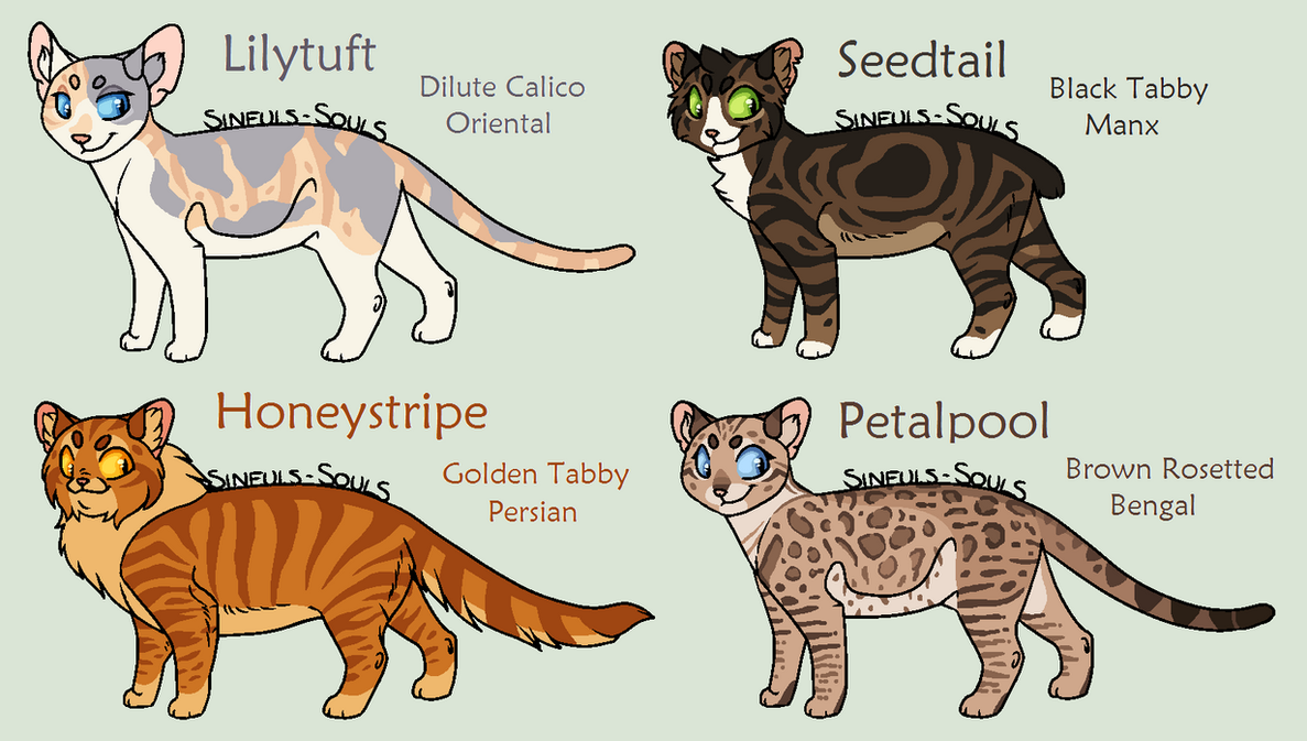 Warrior Cats Group Base