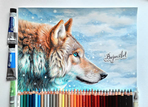 Wolf fantasy drawing