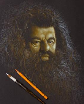 Rubeus Hagrid Drawing