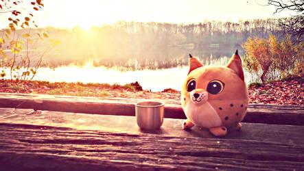 13. Tea for the Lynx