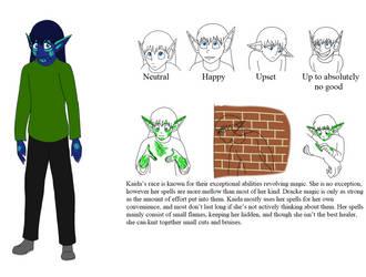 Updated Kaida Ref. Sheet