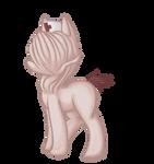 My Silent Pony