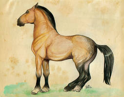 Horse by green-ermine