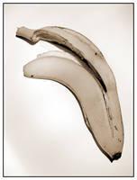 banana by pixelcatcher