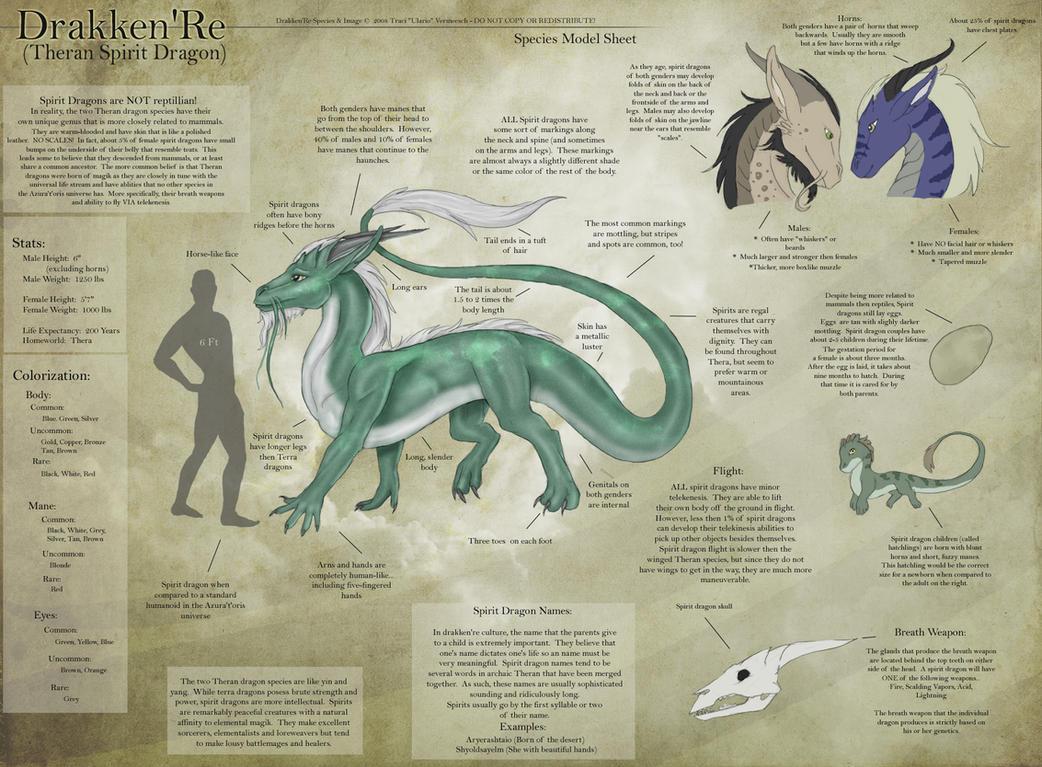 dragon species by leveldrow on spirit dragon species sheet by ulario