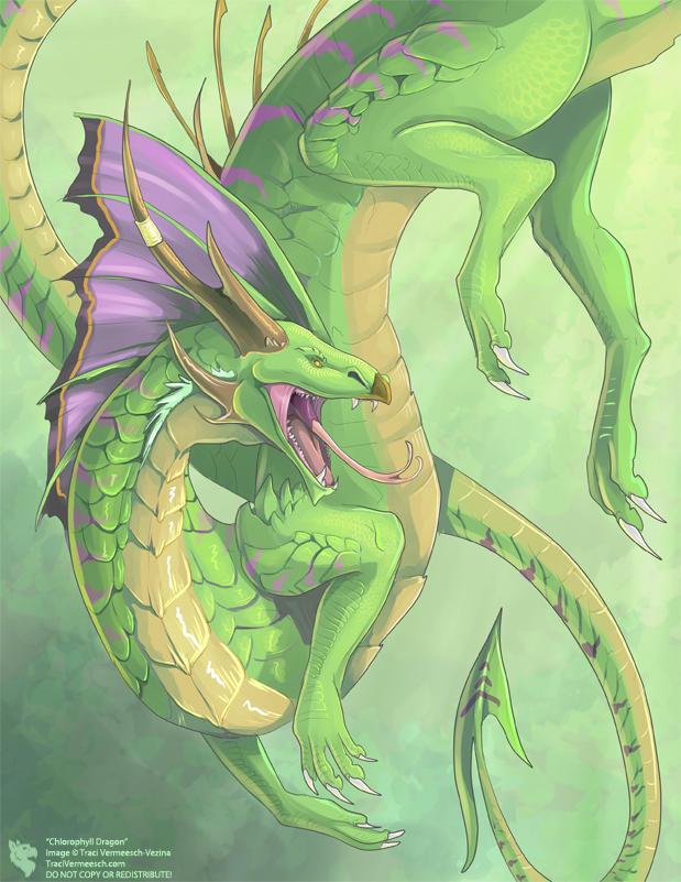 Chlorophyll Dragon
