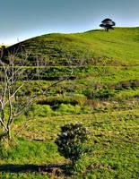 barns-en hill by barns-en