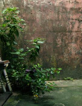 barns-en wall