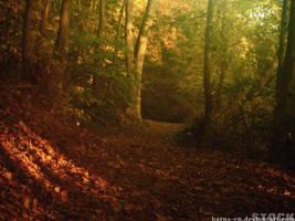 barns-en autumn forest by barns-en