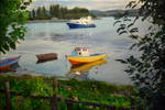 Where Boats are Cars 2014 by ArielRGH