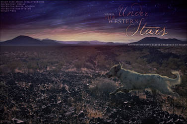 under the western stars