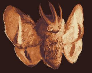 Moth by Polariche