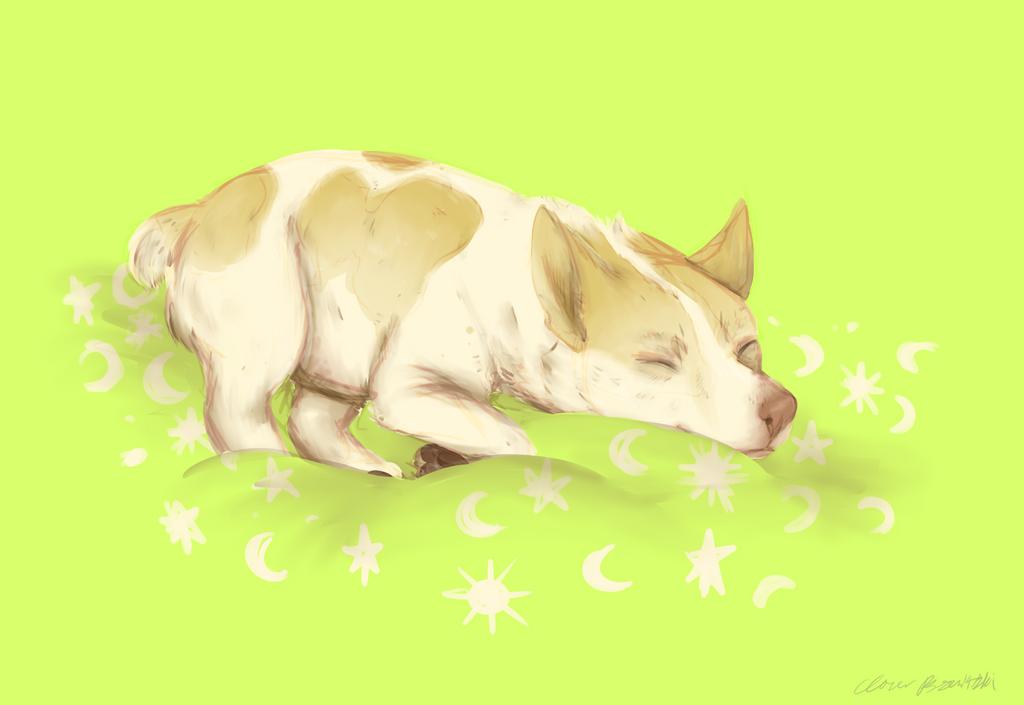 havin a snooze by irlnya