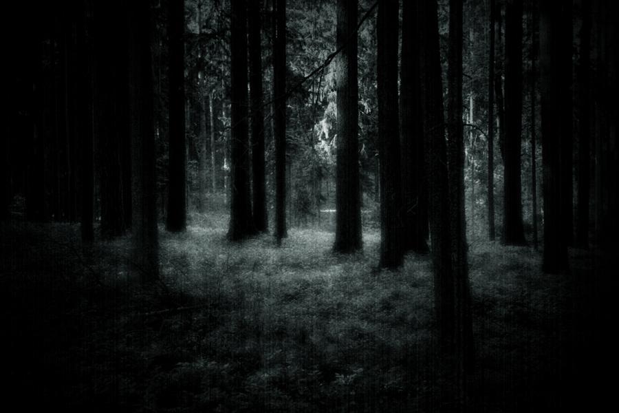 Through Thick Fog by WotansKriegerin