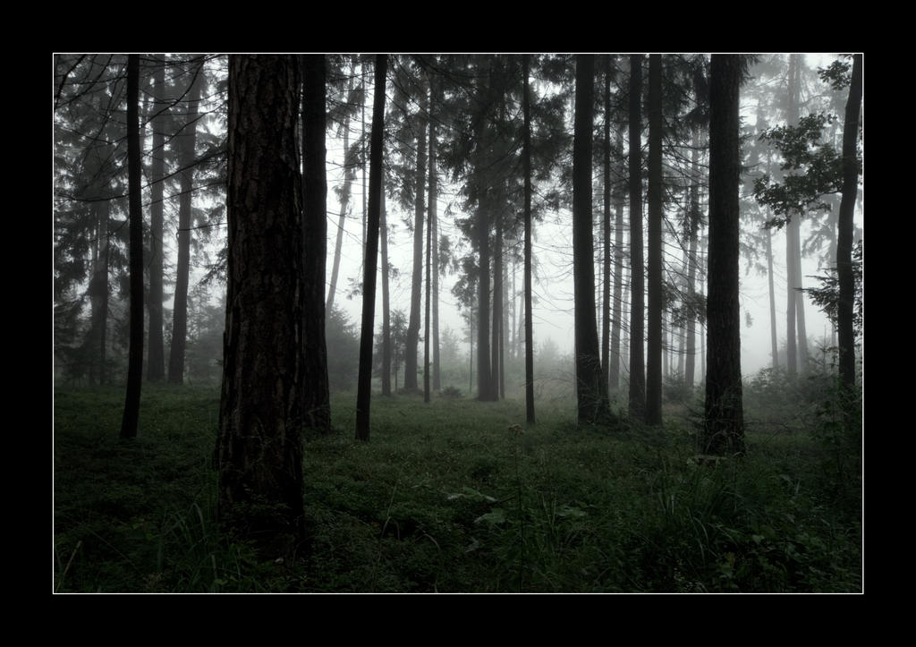 Shining by WotansKriegerin
