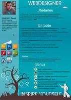 Creative CV - Resume by olybop