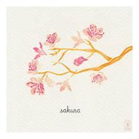 Day 59 - sakura