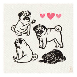 Days 60-63 - Pug party!