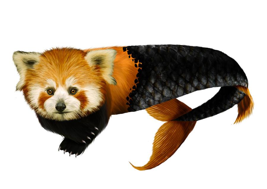 FishPanda's Profile Picture