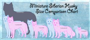 Visual Size Chart of The Miniature Siberian Husky