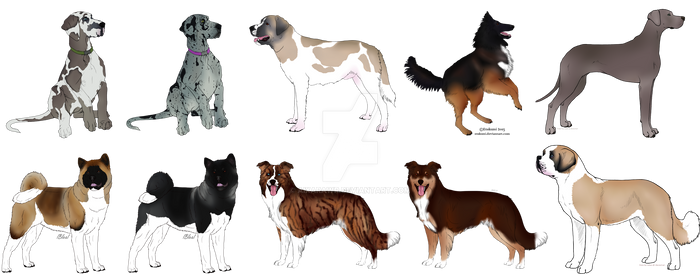 :CO: for Waggintails-kennels