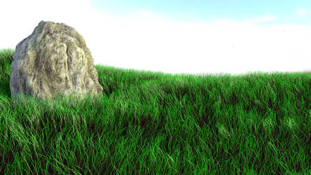 Grassy Landscape by Seri0us1y
