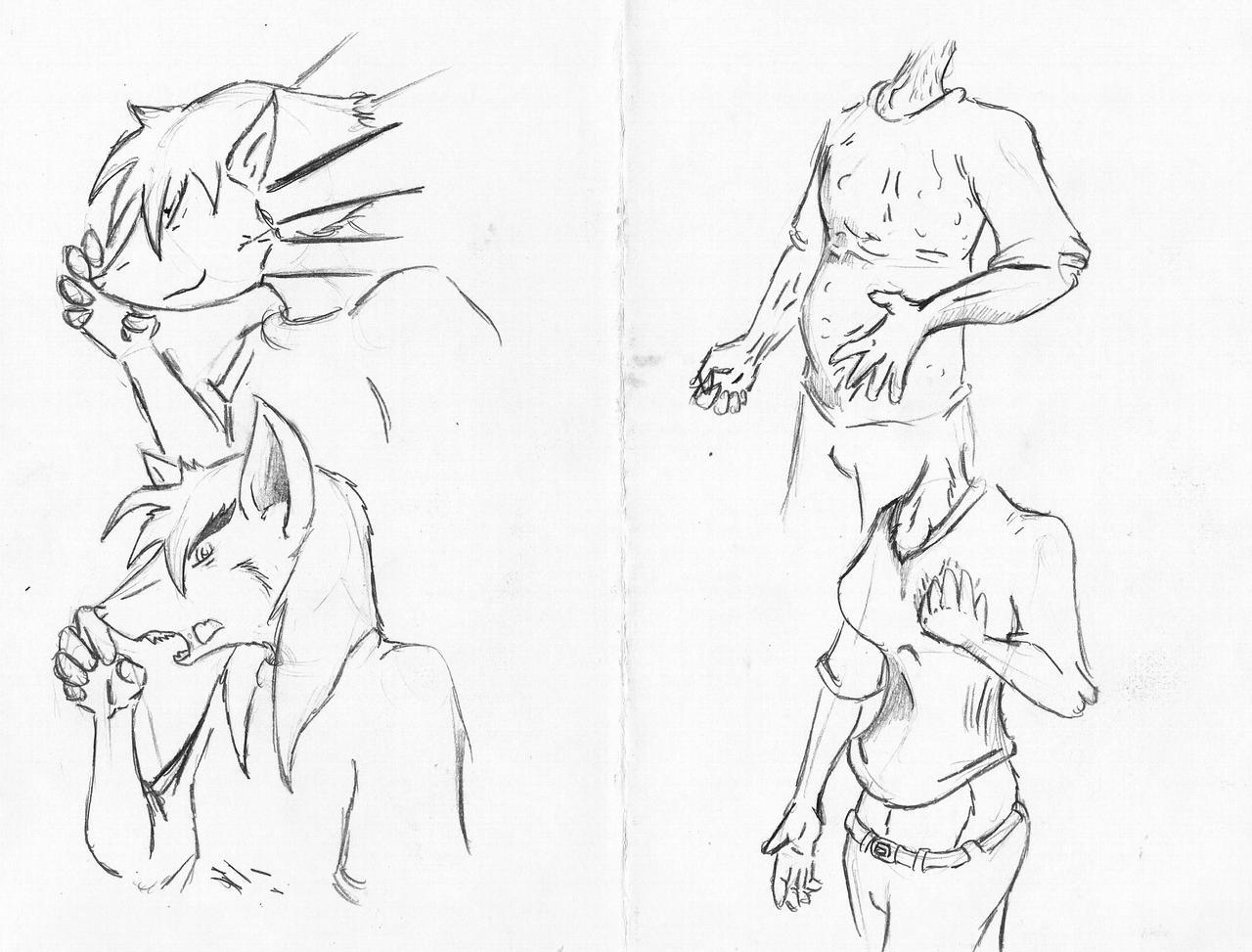 mask of kitsune 3 by MaxSilverfox