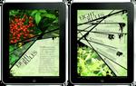 Insite Magazine - iPad Article by Akanthea