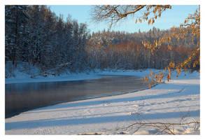 Blue winter by kuzjka