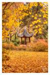 Japanese style fall by kuzjka