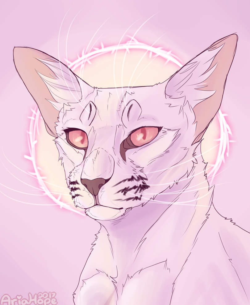 Blossompelt by Aria-Hope