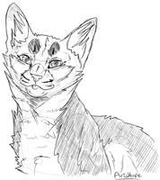 Sketchhh by Aria-Hope