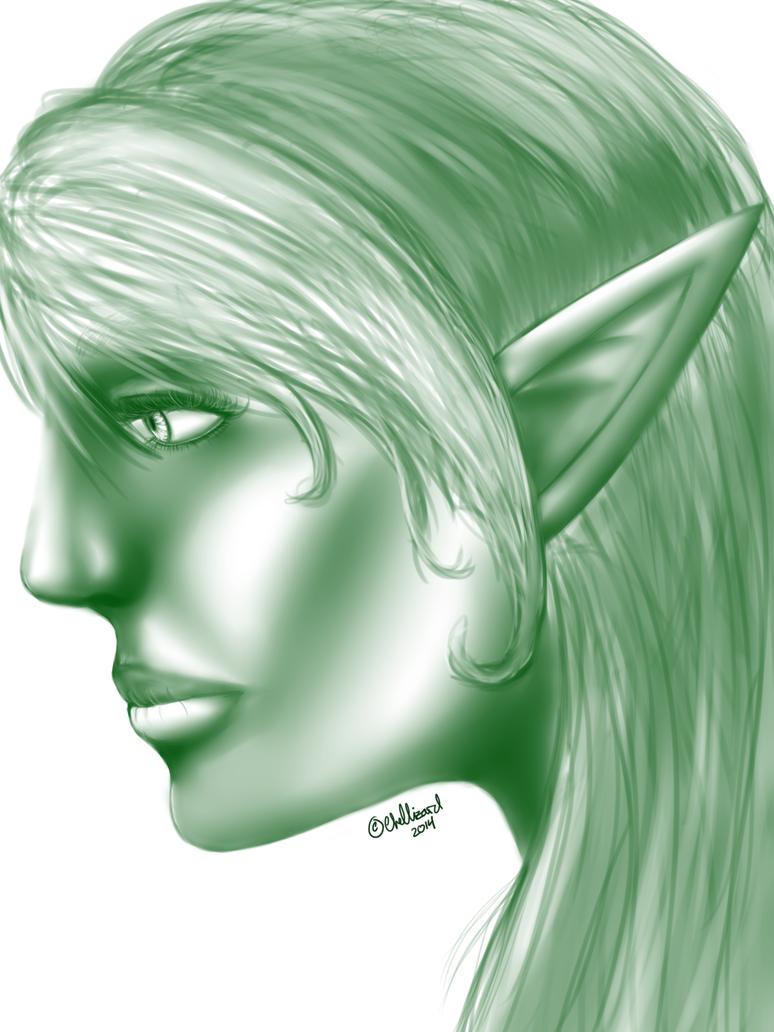 Princess Miri; The Elvish Archer Miri_portrait_by_loserfacerochelle-d80mot7