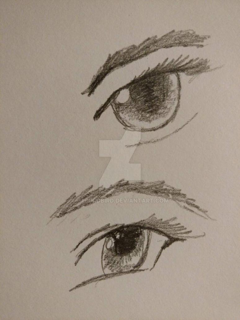 eye study by jtfordbird