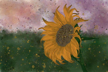 Sunflower Love by awildmiss