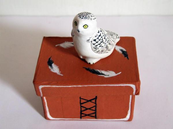 Snowy owl with box by SkyWookiee