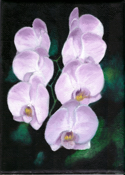 Orchids - My 1st Oil Painting by TigerK0690